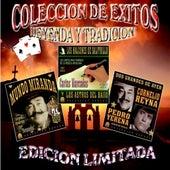 Coleccion De Exitos, Leyenda Y Tradicion by Various Artists