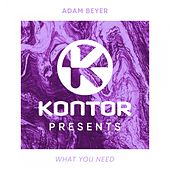 What You Need von Adam Beyer
