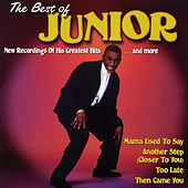 The Best of Junior - Mama Used to Say by Junior