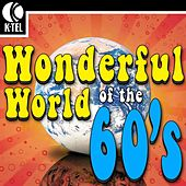 The Wonderful World of the 60's - 100 Hit Songs by Various Artists