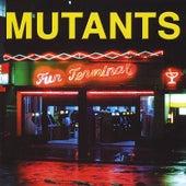 Fun Terminal by Mutants