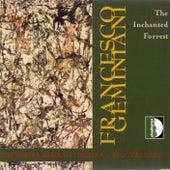 Geminiani: The Inchanted Forrest by Ryo Terakado