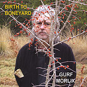 Birth to Boneyard by Gurf Morlix
