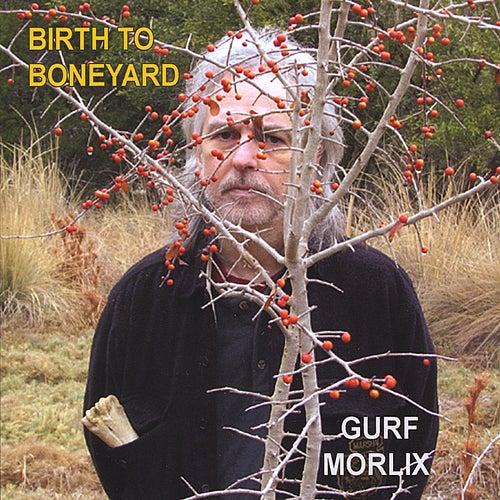 Birth to Boneyard by Gurf Morlix