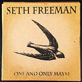 One and Only Maybe by Seth Freeman