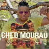 Galbek Howa El Moudir by Cheb Mourad