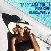Kid Recordings Presents Tropicana, Vol. 1: Poolside Rendezvous by Various Artists