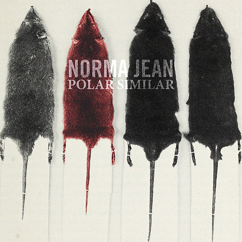Polar Similar by Norma Jean