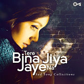 Tere Bina Jiya Jaaye Na: Sad Songs Collection by Various Artists