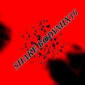 Shake Bodymix16 by Various Artists
