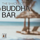 The Shades of Buddha Bar by Francesco Digilio