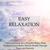 Easy Relaxation - Calming Sounds for a Peaceful Sleep, Deep Meditation and Better Mental Health Through Peace and Serenity by Spa Relaxation