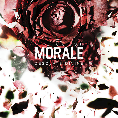 Clip Paper Wings by The Color Morale