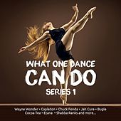 What One Dance Can Do Series 1 by Various Artists