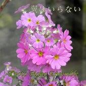 Tsubasawa Iranai (Instrumental Version) by Kyoto Piano Ensemble