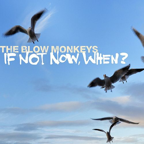 If Not Now, When? by The Blow Monkeys