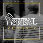 Phoenix by Iz-Real