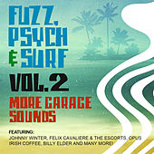 Fuzz, Psych & Surf, Vol. 2 - More Garage Sounds von Various Artists