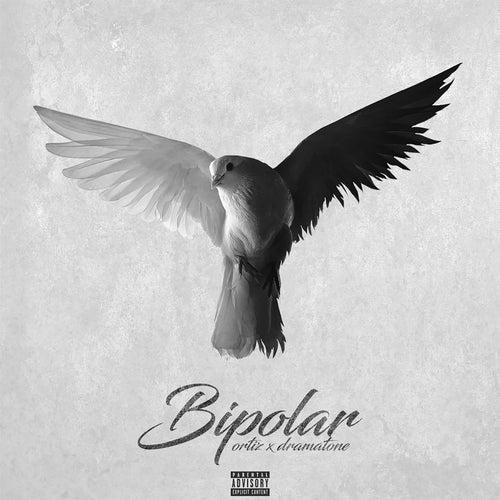 Bipolar by Ortiz