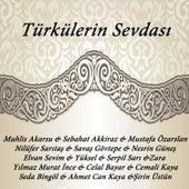 Türkülerin Sevdası by Various Artists