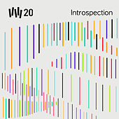VW20 : Introspection - Volume 5 by Vince Watson