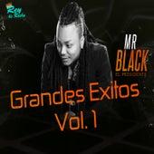 Grandes Éxitos, Vol. 1 by Mr Black