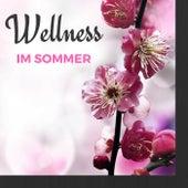 Wellness im Sommer - Tiefenentspannungsmusik zum Ruhen, Beruhigende Hintergrundmusik für Spa Hotel und Massage by Meister der Entspannung und Meditation
