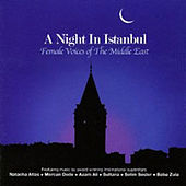 A Night in Istanbul by Various Artists