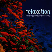 Relaxation by Crimson Ensemble