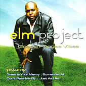 Elm Project - Gospel Reggae Vibes by Various Artists