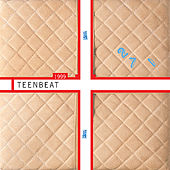 1999 Teenbeat Sampler by Various Artists