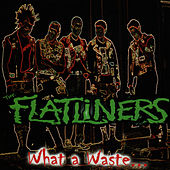 What a Waste by The Flatliners