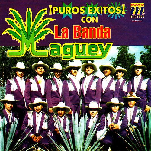 Puros Exitos by Banda Maguey