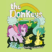 Theme from the Endless Summer by The Donkeys