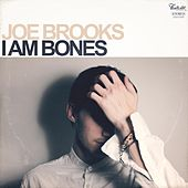 I Am Bones by Joe Brooks