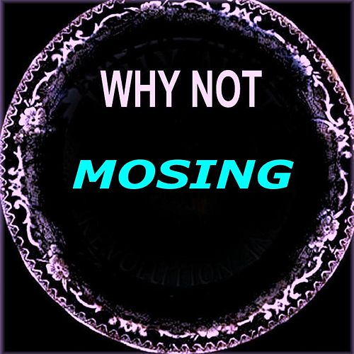 Mosing by Why Not
