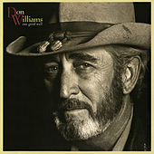 One Good Well by Don Williams