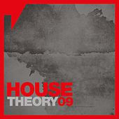 House Theory, Vol. 9 by Various Artists