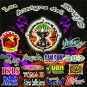Los Amigos del Brujo by Various Artists