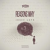 Reasons Why by Josef Lupo