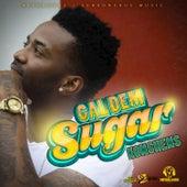 Gal Dem Sugar - Single by Konshens