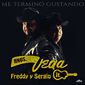 Me Terminó Gustando by Hermanos Vega JR