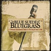 Blue Suede Bluegrass: A Bluegrass Instrumental Tribute to the King of Rock 'n' Roll by Craig Duncan