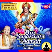 Om Saraswate Namah (Meditation Mantra) by Shailendra Bhartti