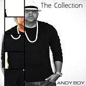The Collection by Various Artists