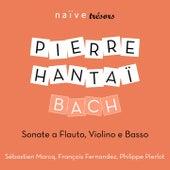 Bach: Sonate a Flauto, Violino e Basso by Pierre Hantaï