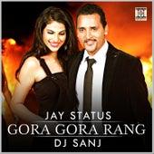 Gora Gora Rang by DJ Sanj