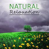 Natural Relaxation – Nature Sounds, Calm Waves, Tranquility, Calm Spirit, Soft Music by Nature Tribe