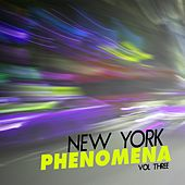 New York Phenomena, Vol. 3 - Selection of Deep House by Various Artists