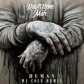 Human (MJ Cole Remix) by Rag'n'Bone Man
